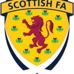 SFA badge[3]